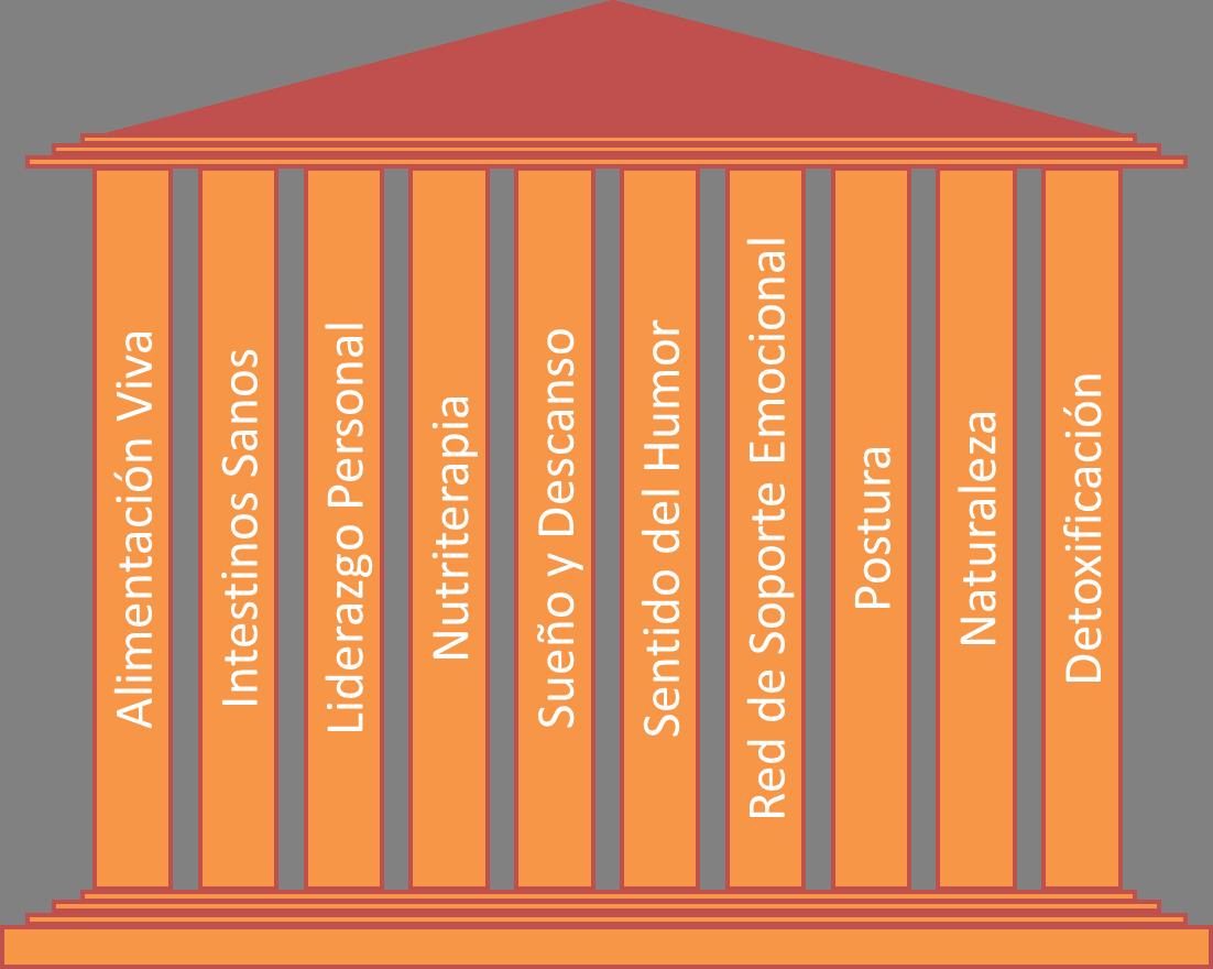 Pilares de la salud y longevidad